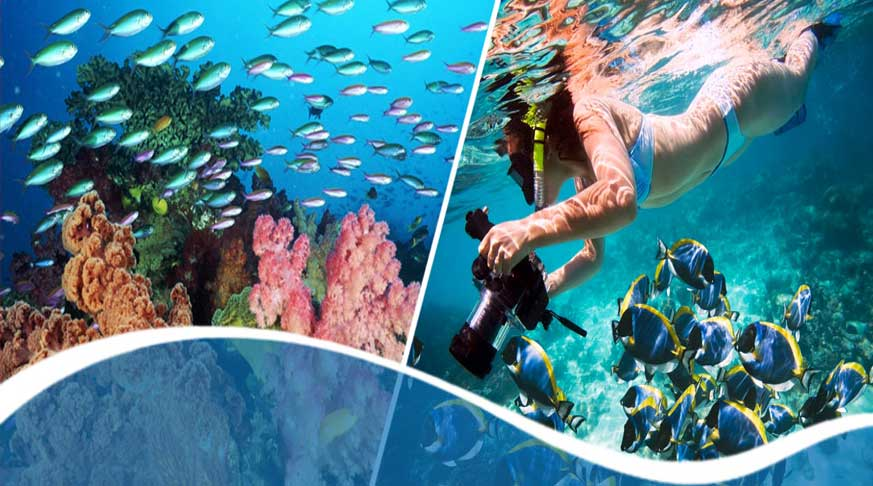 immersioni e guida a cuba. paquetes turisticos a cuba todo incluido. cuba travel packages